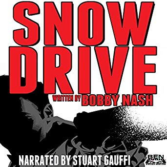 Snow Drive Cover