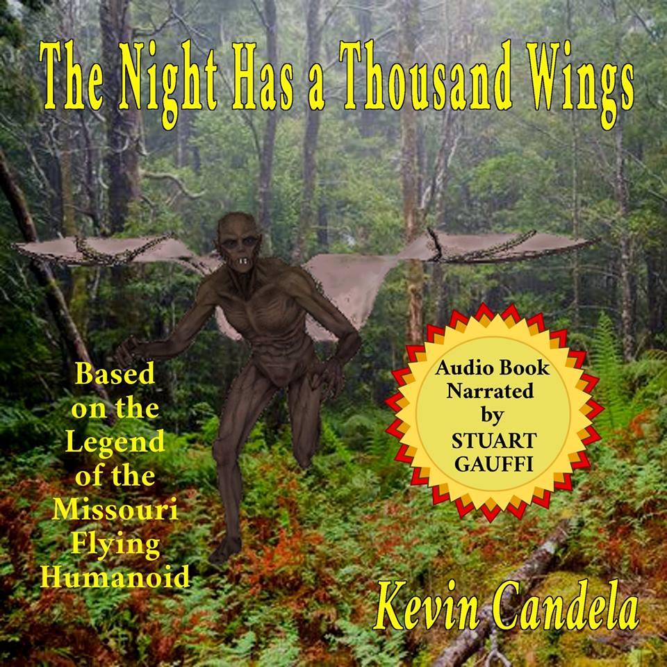 The Night Has a Thousand Wings Cover